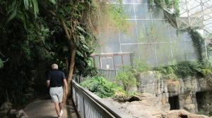 Entering the rain forest in Biosphere 2